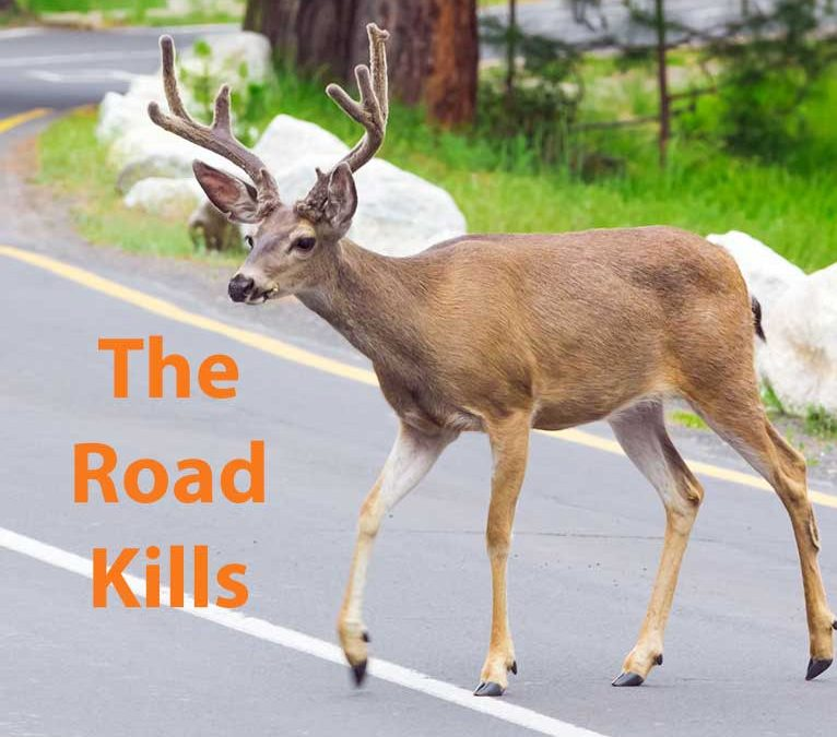 The Road Kills
