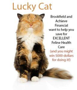 brookfield lucky cat