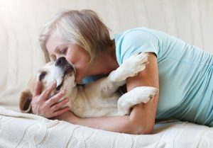Brookfield Veterinary Client with her senior dog