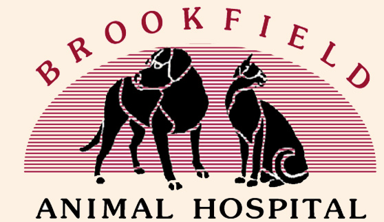Brookfield Animal Hospital