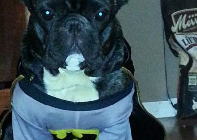 satchmosweetcheeks-batman