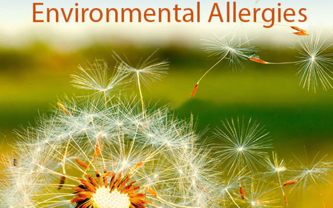 Environmental Allergies (Atopy)