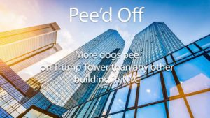 Picture of building for satire blog Dogs Pee On Trump Tower