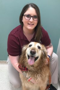 Brookfield Animal Hospital is a veterinary hospital located in Fairfield county in Brookfield, CT