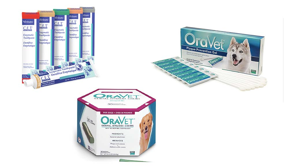 safe oral healthcare products for pets